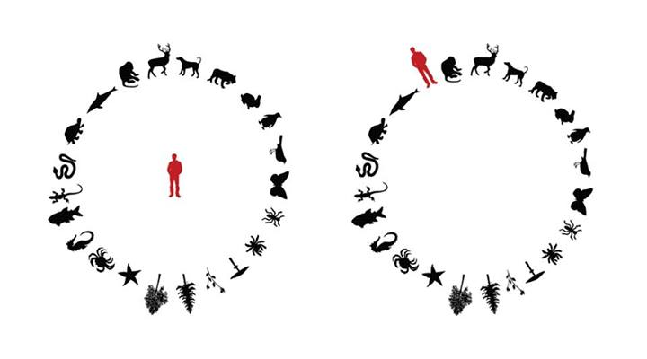 Biyosentrizm, Antroposentrizm ve Ekosentrizm