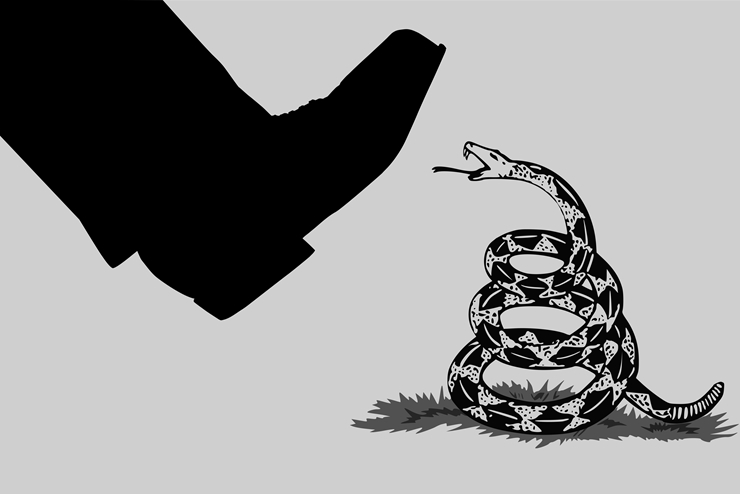 Liberteryenizm-nedir
